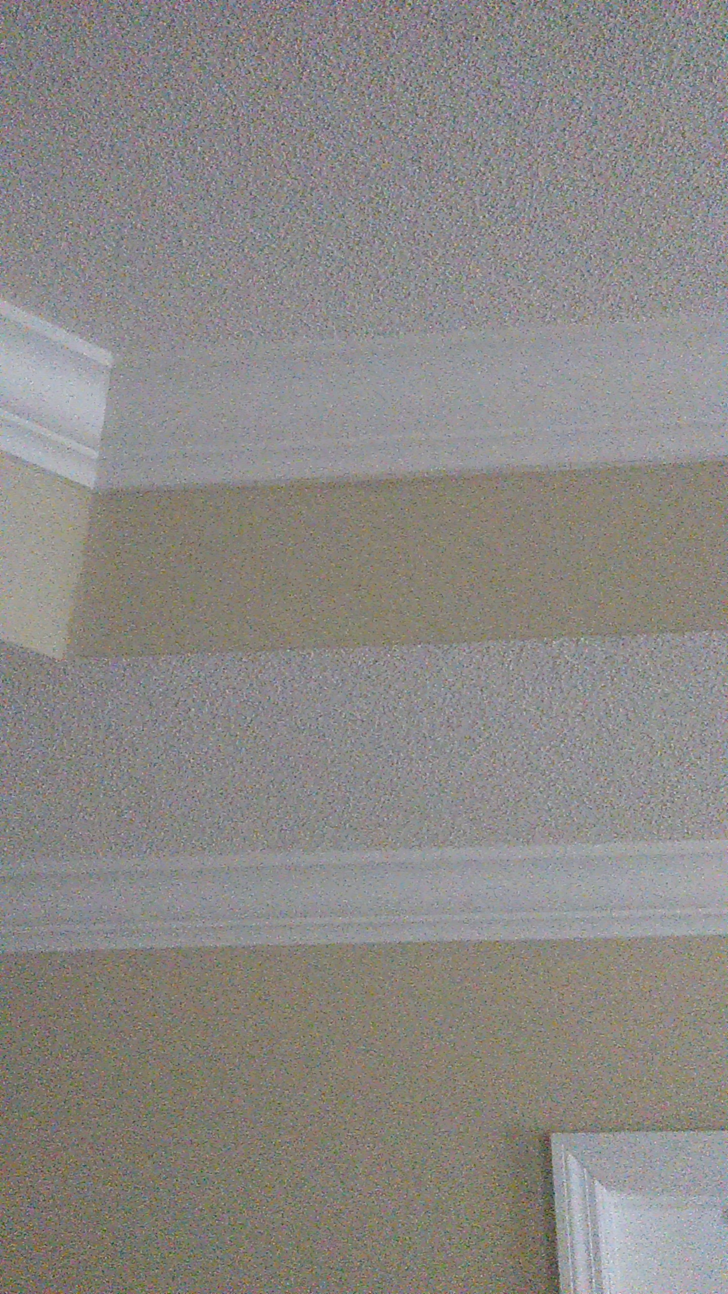 Bedroom (Tray Ceiling)