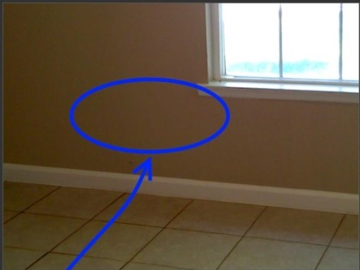 Can you see the moisture behind the wall?