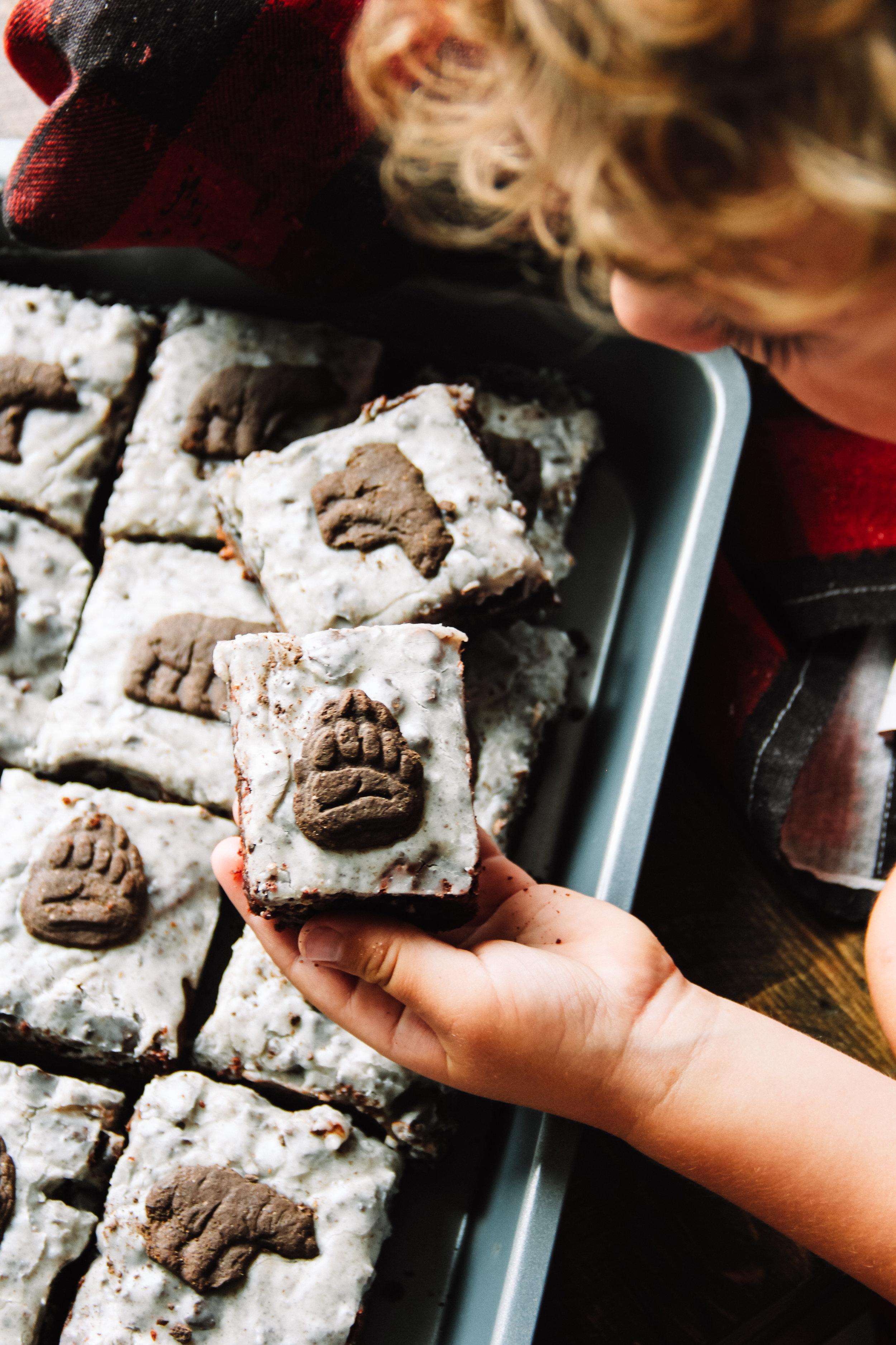 Soren Bear's favorite homemade brownies.