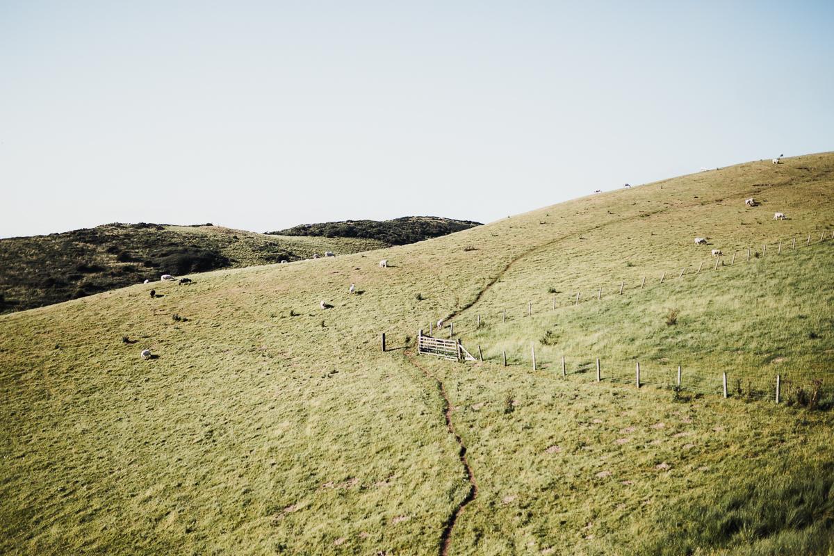 Superfex_BlogPost_Pembrokeshire_Wales_Ceredigion_Coast_Path_7.jpg