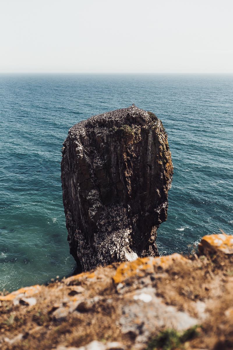 Superfex_BlogPost_Pembrokeshire_Wales_Elegug_Stacks_5.jpg