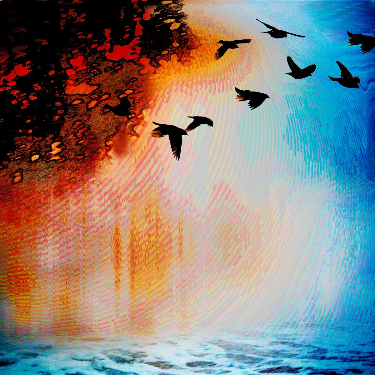 Earth, Wind, Water, Fire
