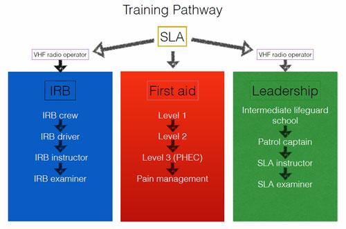 trainingpathway.jpg
