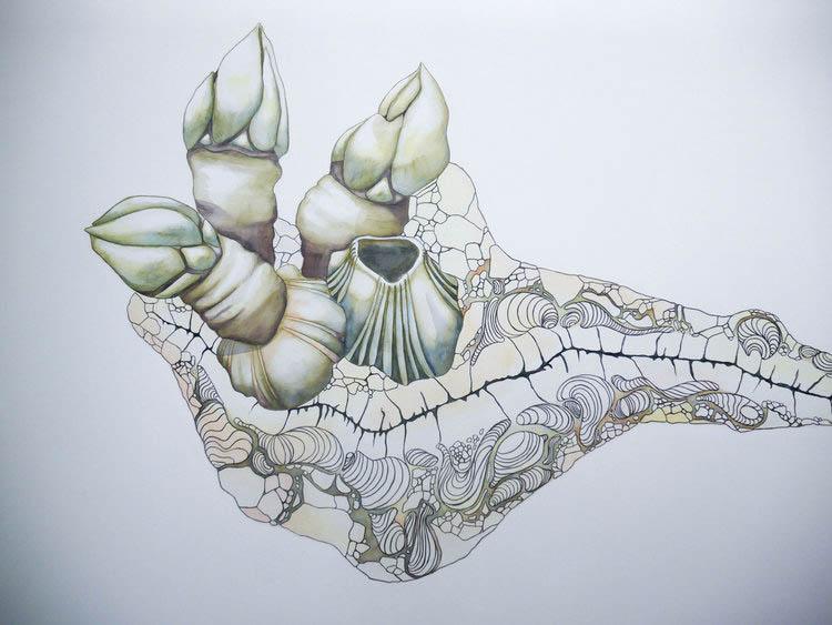 Bioforms Mural