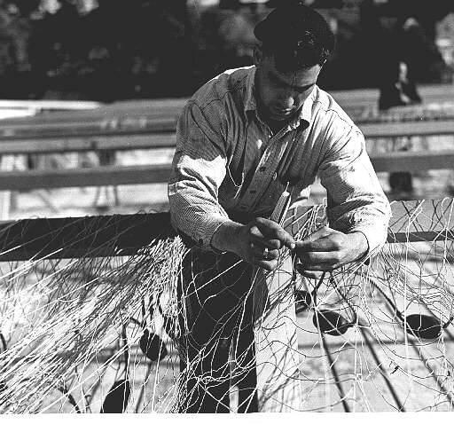 Fisherman.jpeg