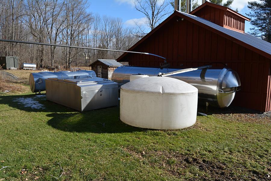 Sap collection tanks