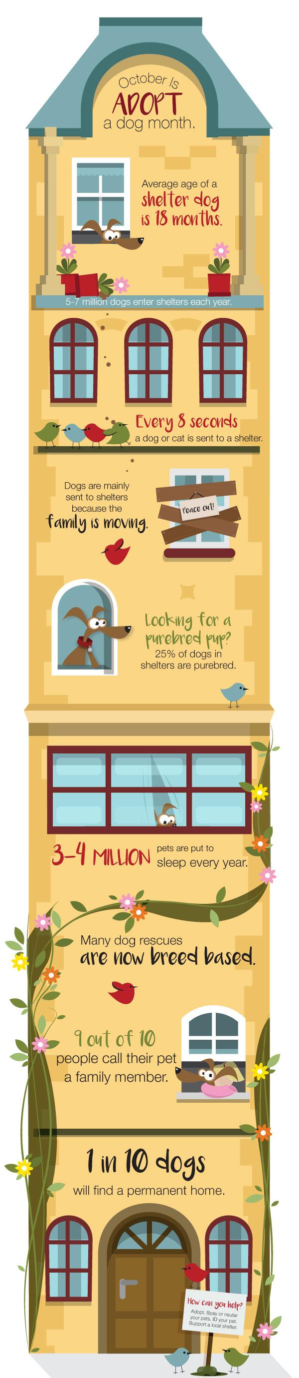 Adopt-a-Dog-Month2.jpg