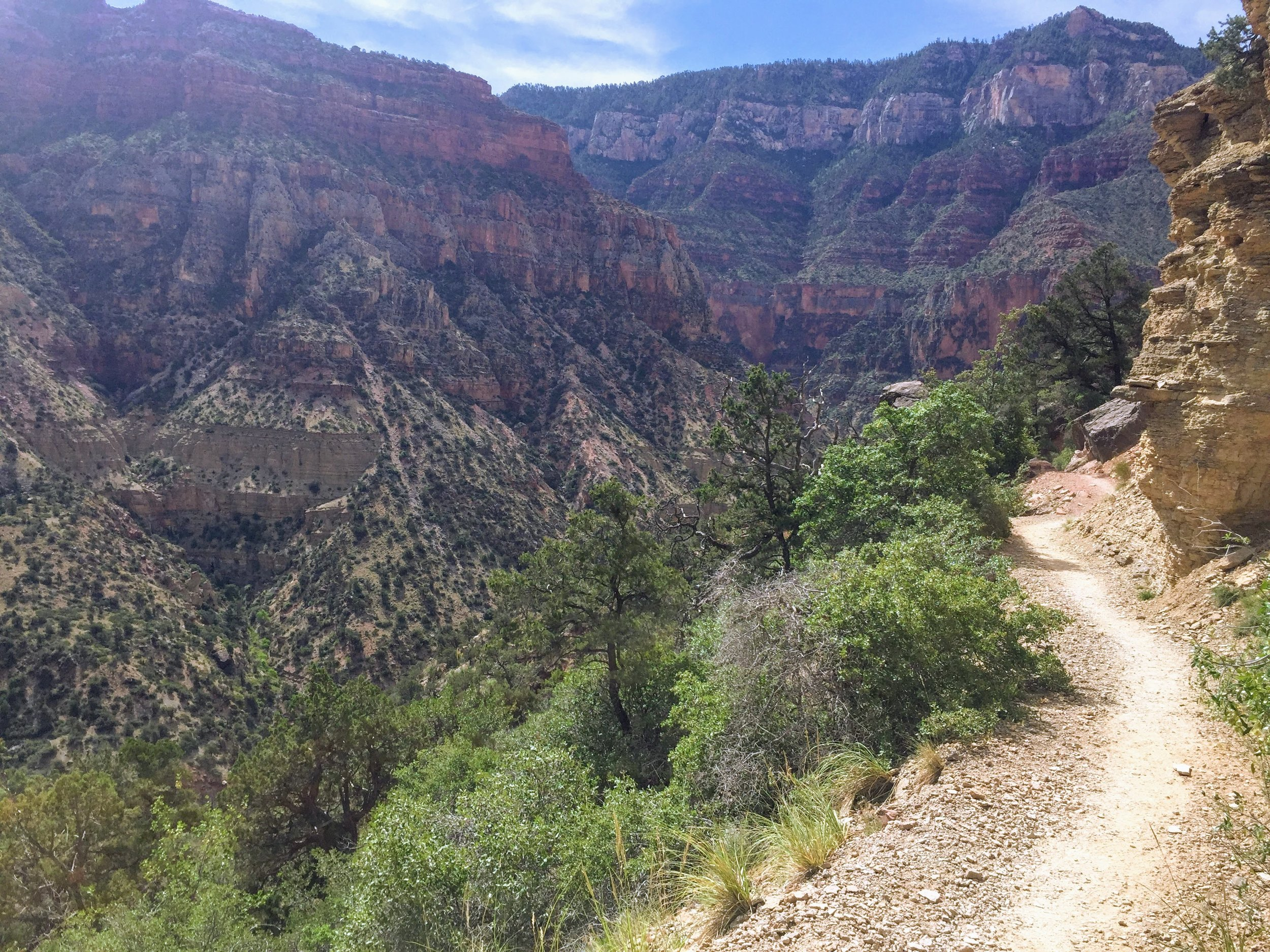 Day 1: View from the North Kaibab trail