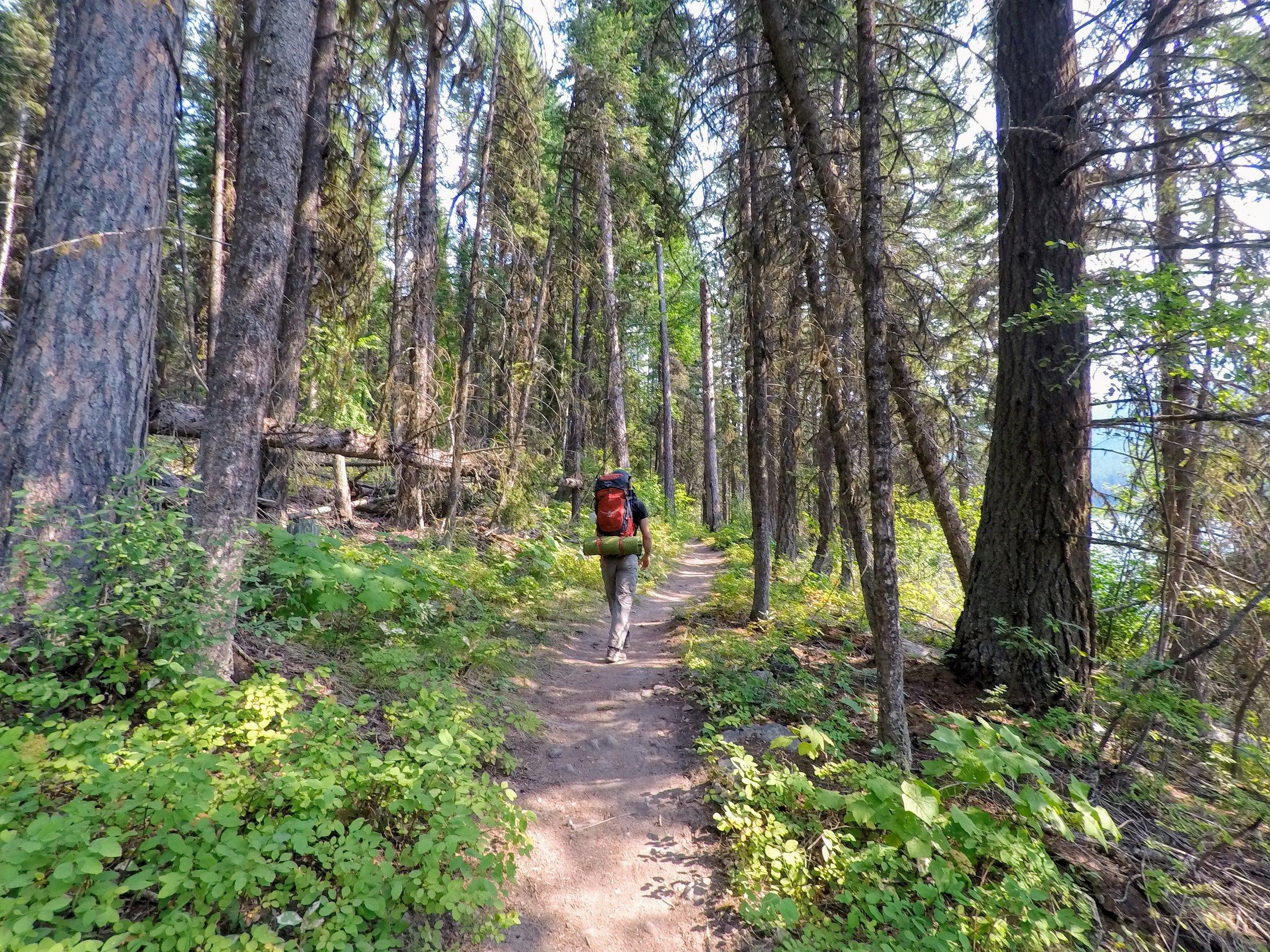 Day 1, Mile 1. Bowman Lake Trailhead to Bowman Lake Head Campground.
