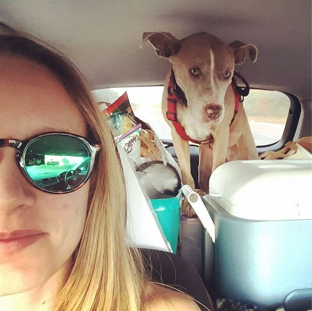 We're all loaded up and on our way to Garner State Park for the weekend. Where are y'all camping this Fall? #camping #campingwithdogs #getoutside #letscamp #carcamping #texascamping