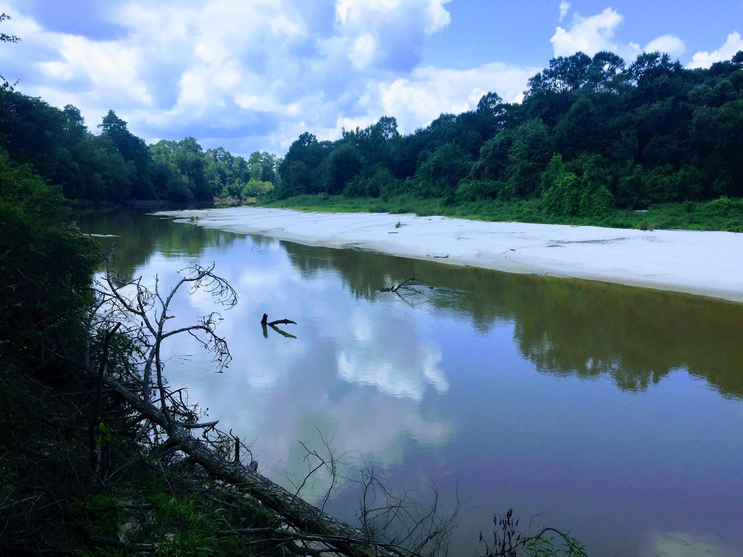 Virgin Creek