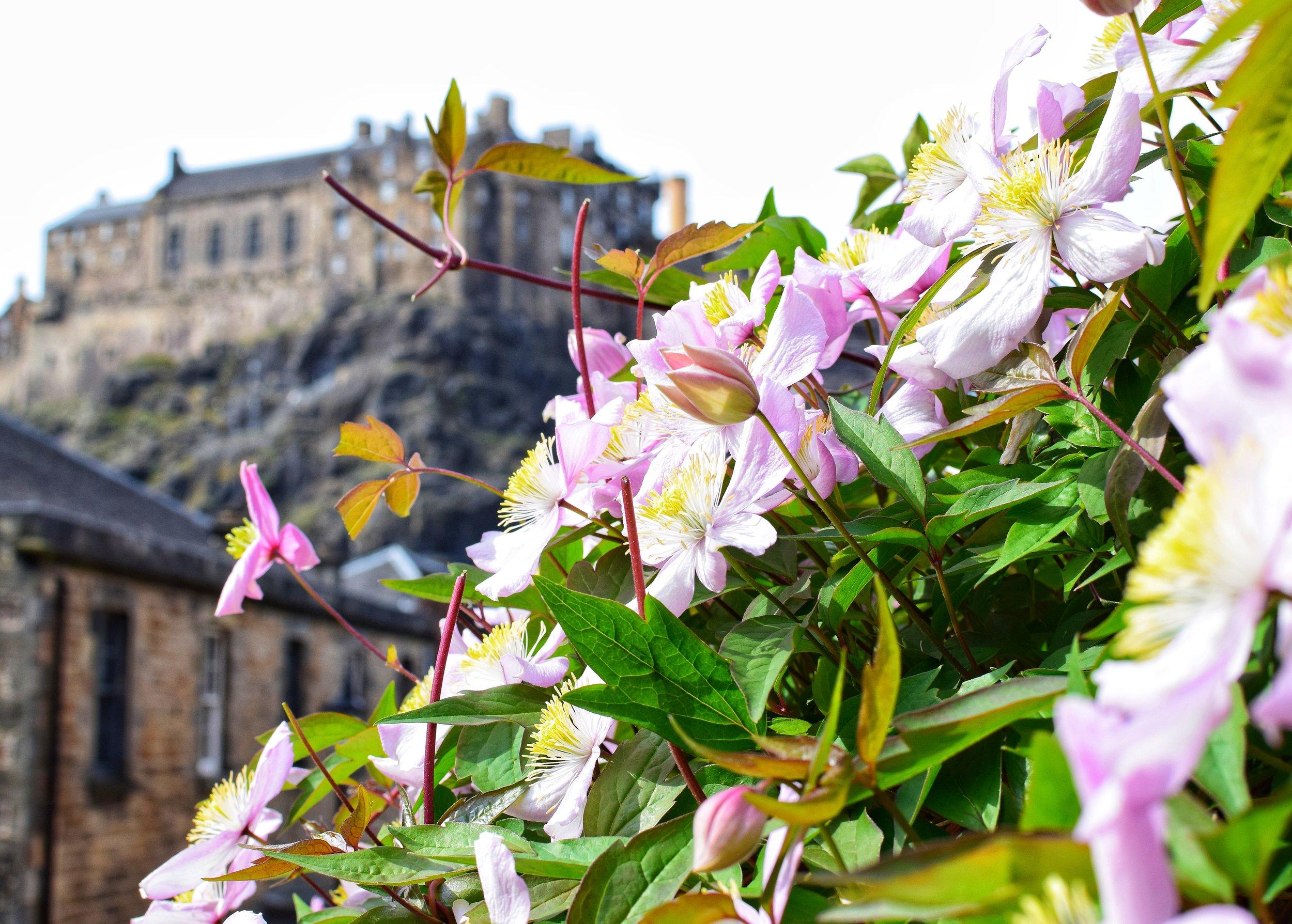 Edinburgh Castle (The Vennel, Edinburgh, Scotland)