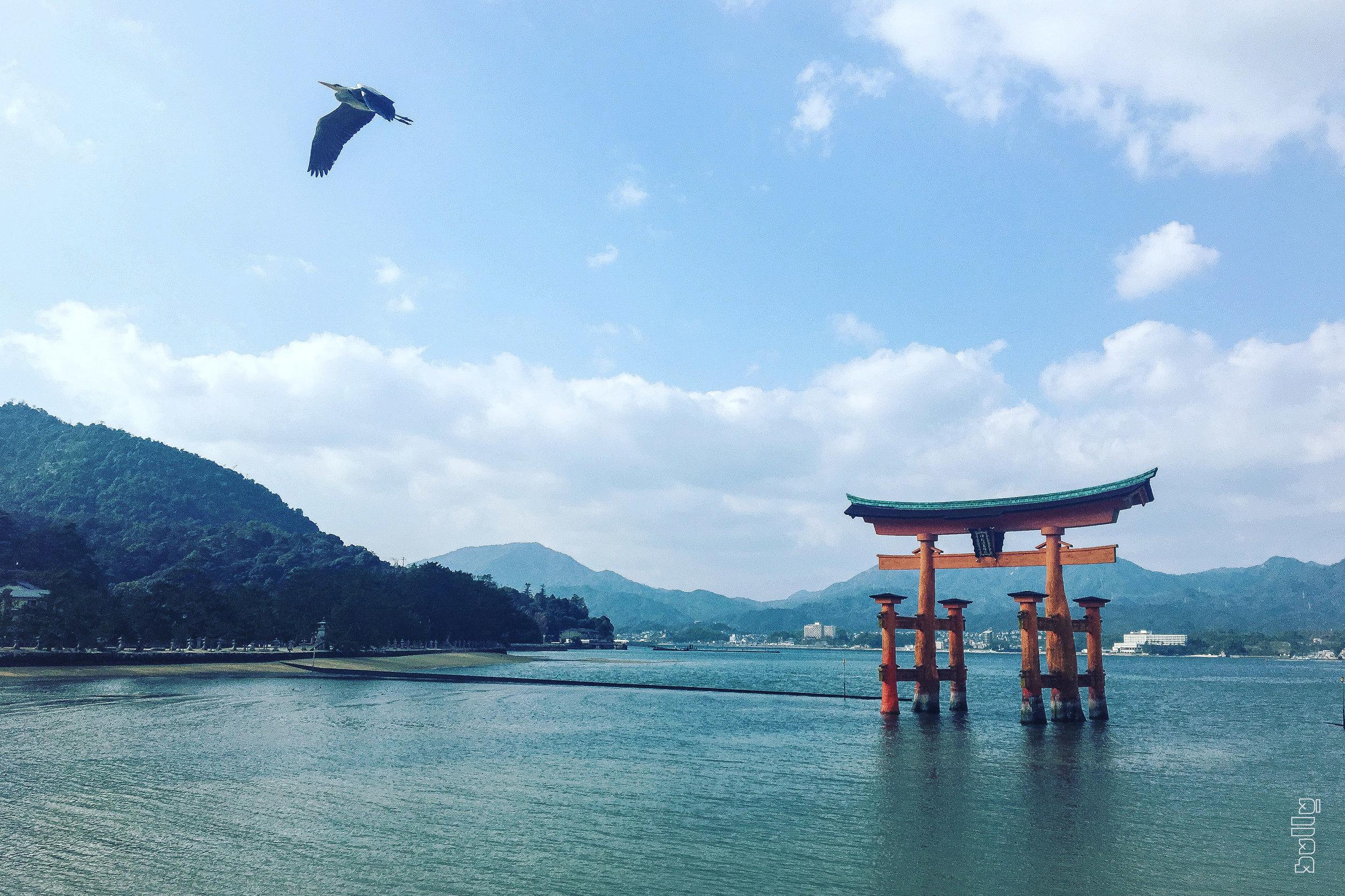 JAPAN.003.jpg