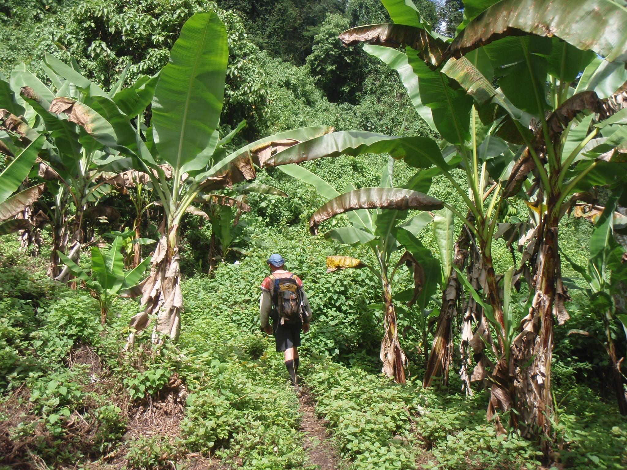 Costa Rica Jungle Trek.jpg