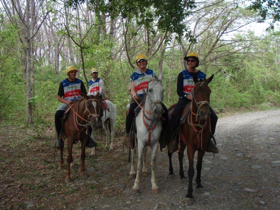 Costa Rica 2012 Horses.jpg