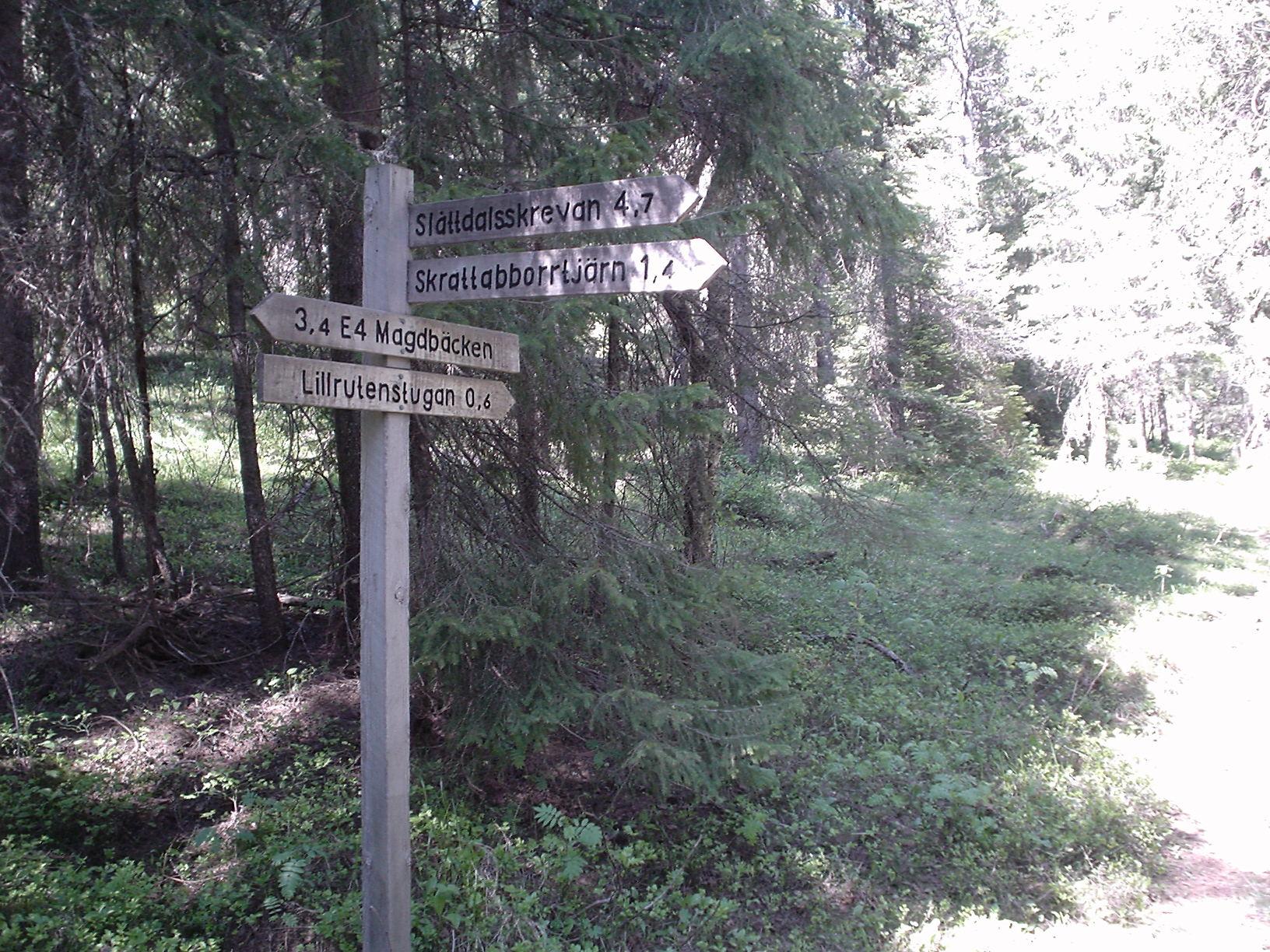 Explore Sweden 063.jpg