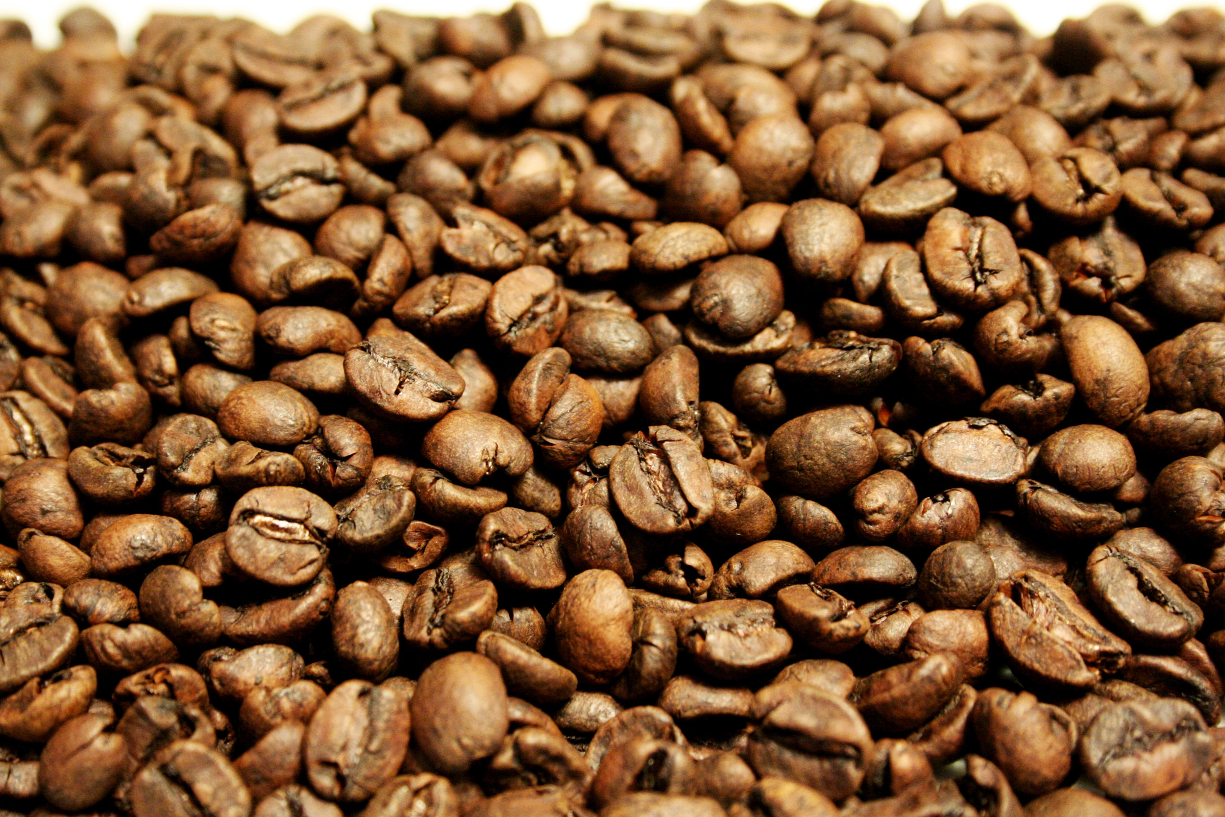 Whole beans from Stringbean Coffee Company - their special roast of Decaf Costa Rica.