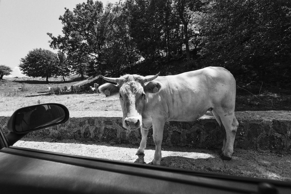 26 Matera, Italy.jpg