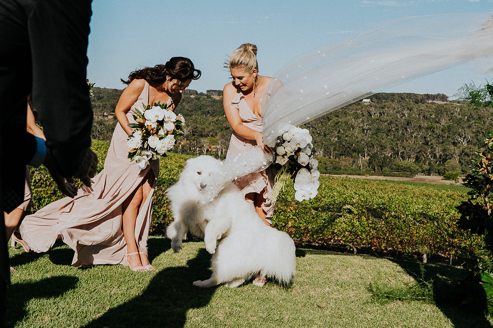 Asha-Tristan-Credaro-Wedding-172.jpg