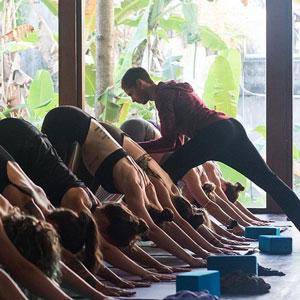 down-dog-adjustment-radiantly-alive-bali-ubud-yoga-300.jpg