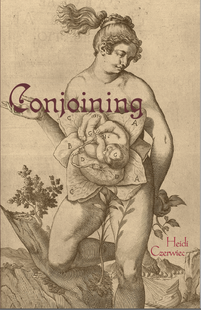 conjoining_cover-664x1024.png