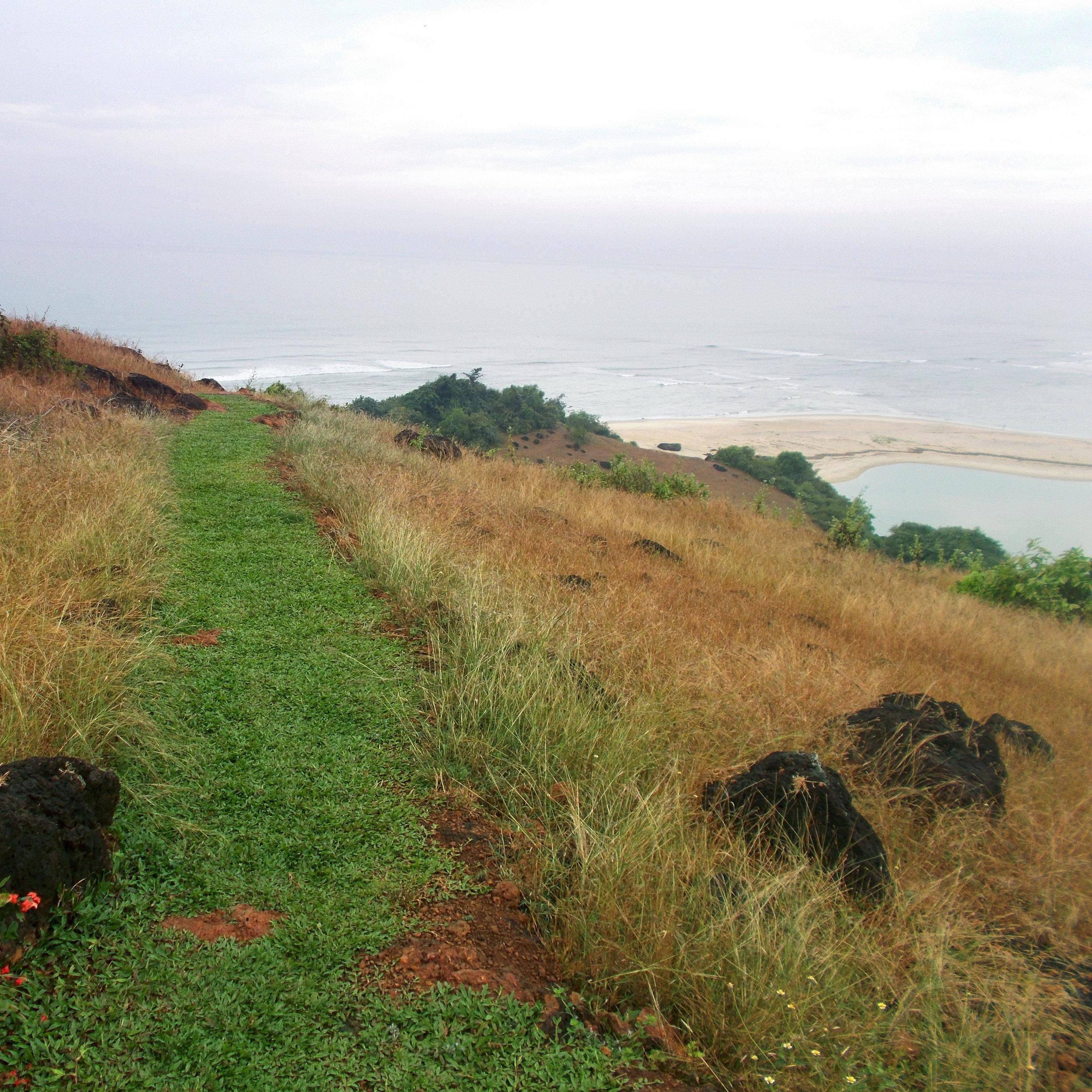 Nature Trail -