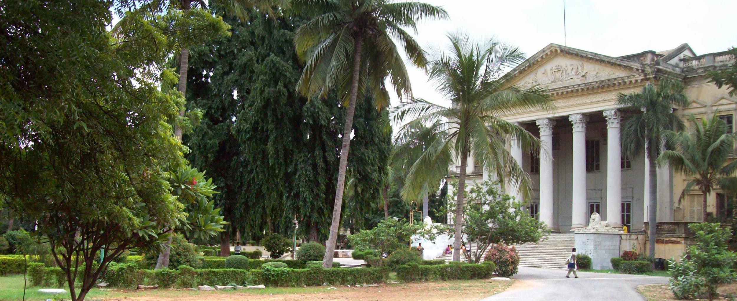 Ficus-landscape-bangalore-Osmania university-Hyderabad-2