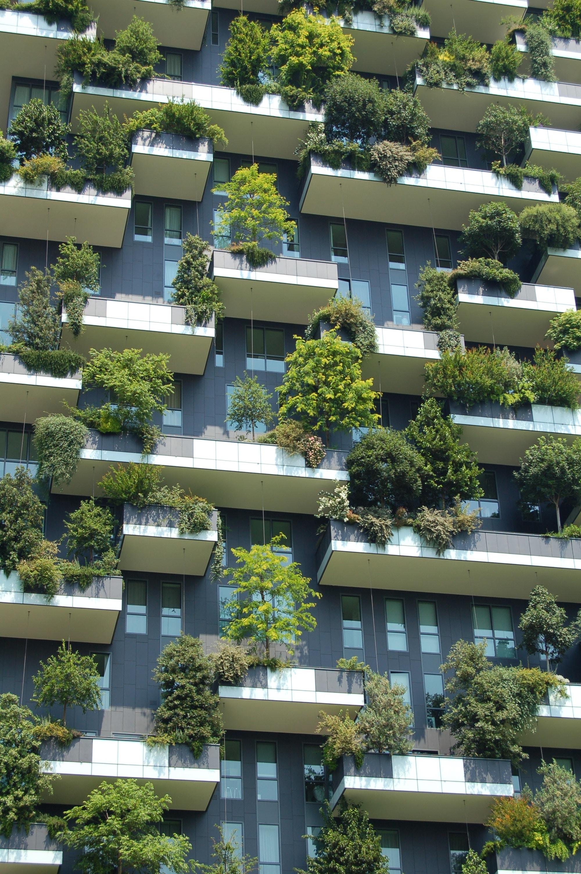 Neo-Ökologie -