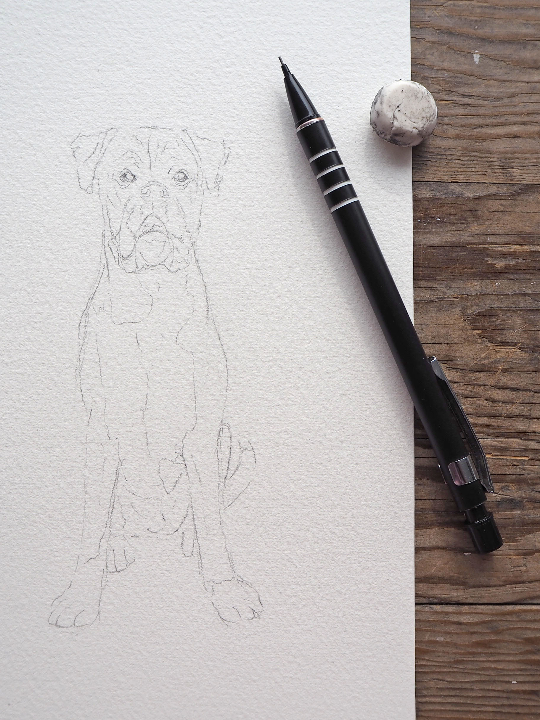 Step by step watercolour dog portrait