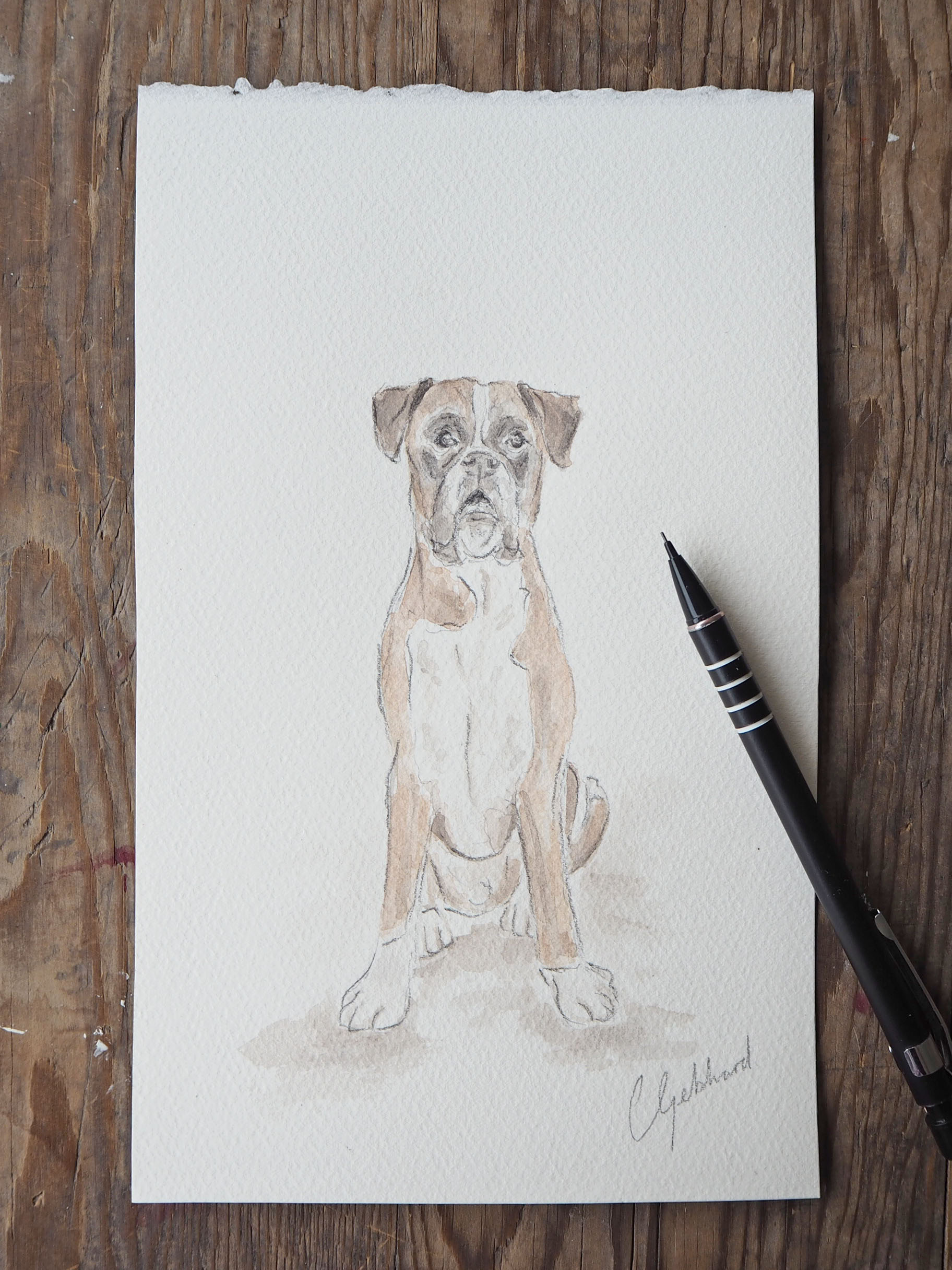 step by step watercolour dog painting