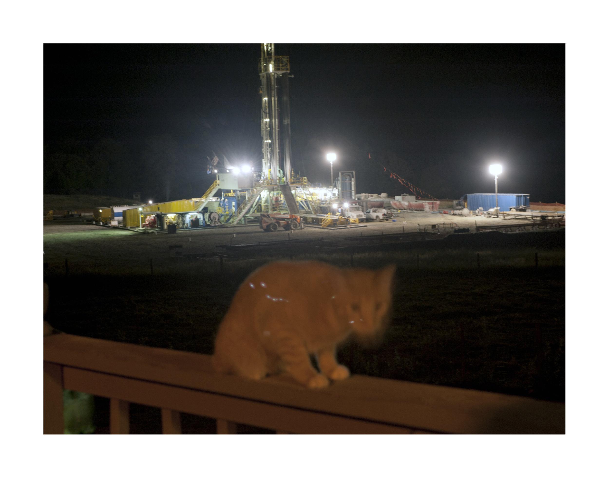 A cat on a terrace near a Chesapeake drill rig