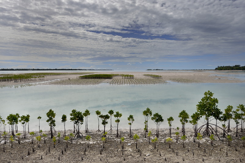 Copy of Climate change / sea-level rise in Kiribati