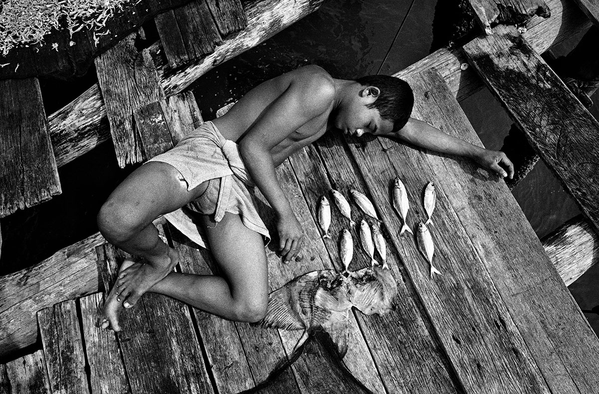 Indonesia, Malakka Straits, April 2001,Sularso shakes the dried fish from the net, readying them for packing.