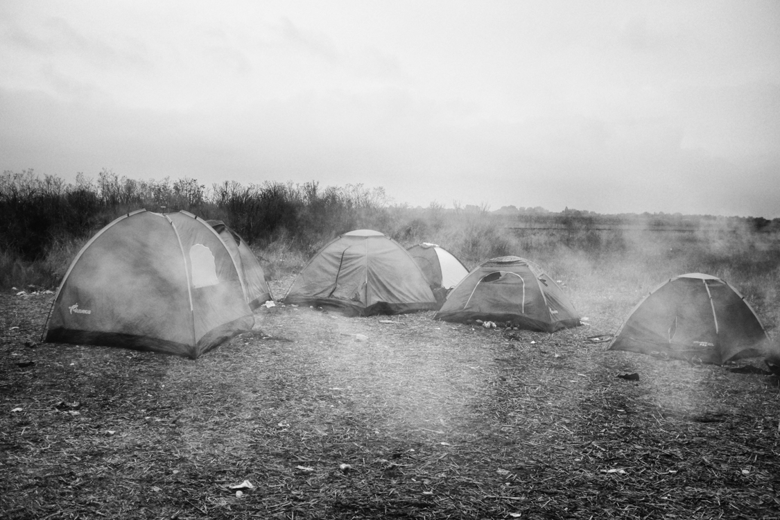 Migrants' tents forming transient campsite on an empty field in southern Hungary.