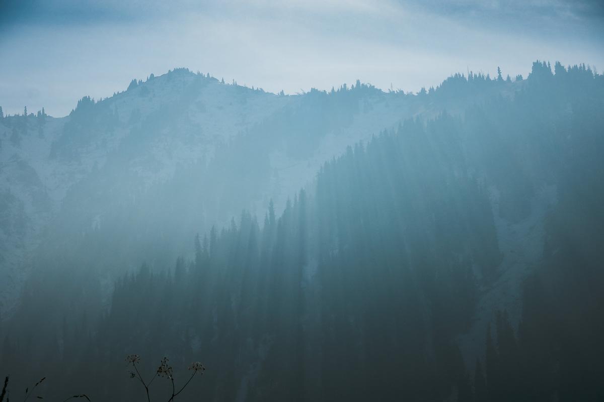 Kelis_Bahtiyar_The Mountains Float in Lilac Mist_3.jpg