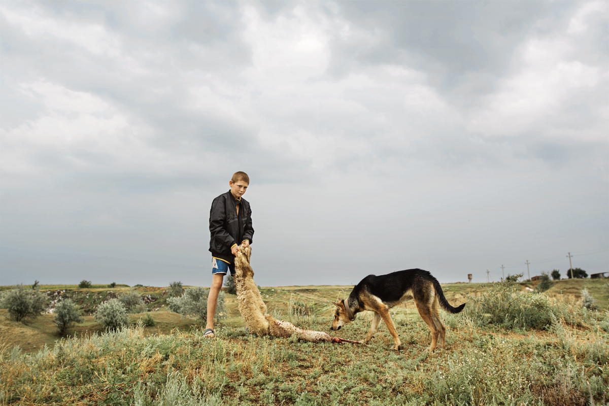 Moldova. Beshalma, Gagauzia - July 2017Vadim is playing with a german shepherd using a sheepskin. Occasionally Vadim helps adults in several jobs to earn a few cents with which he buys sweets.