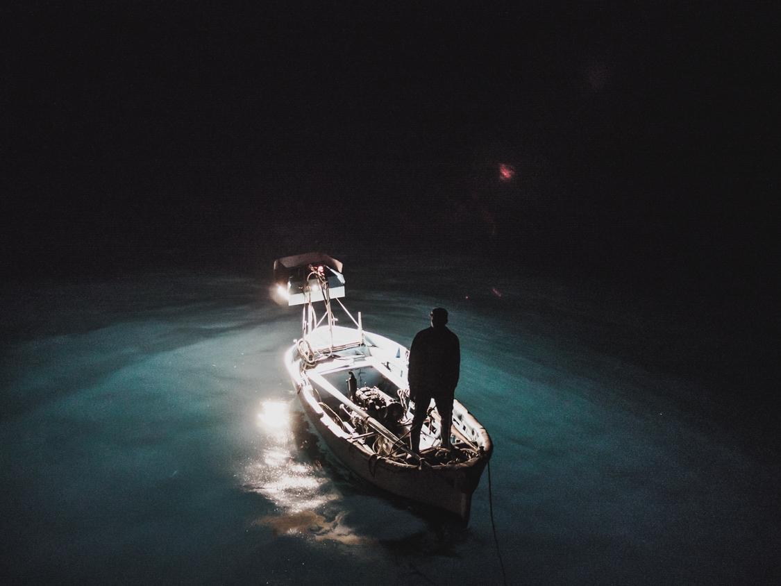 In mare la minaccia principale è rappresentata dalla mortalità indotta dalla cattura accidentale in attrezzi da pesca, in particolare palangrese derivante, strascico, palangrese di fondo e reti fisse.