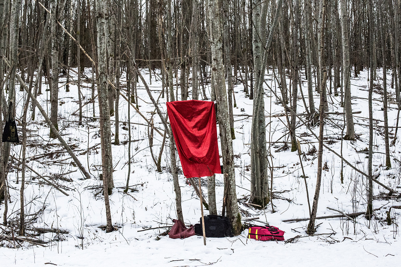 A mock battle banner rests in a forest during a training session for Viking reenactors in Norway. February 2018.