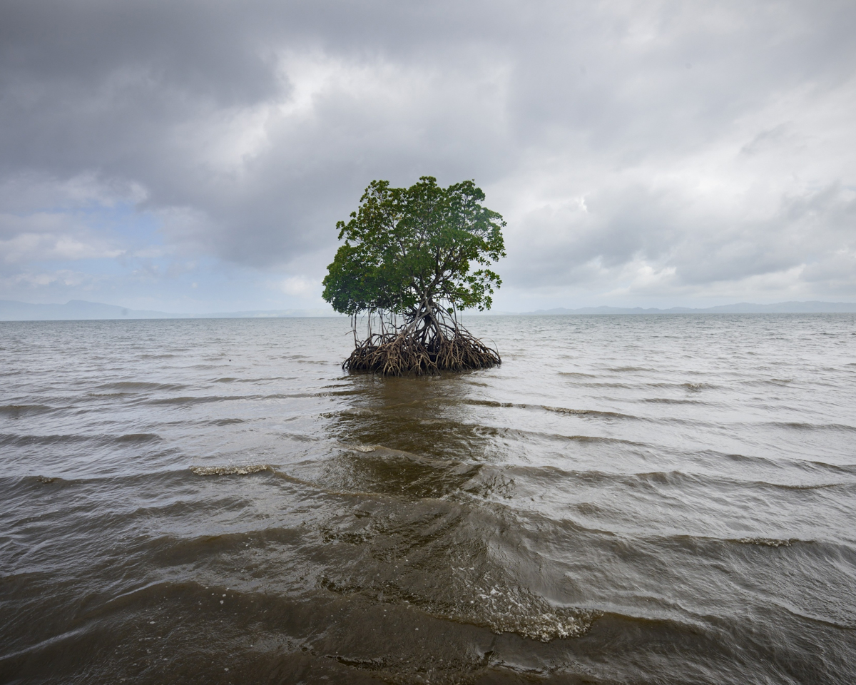Rising Sea Levels:Where Will We Go? - by Kadir van Lohuizen