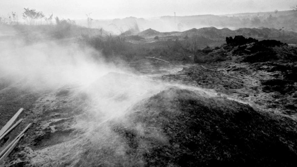 Brazil's Range War: Assault on the Amazon - by Kadir van Lohuizen