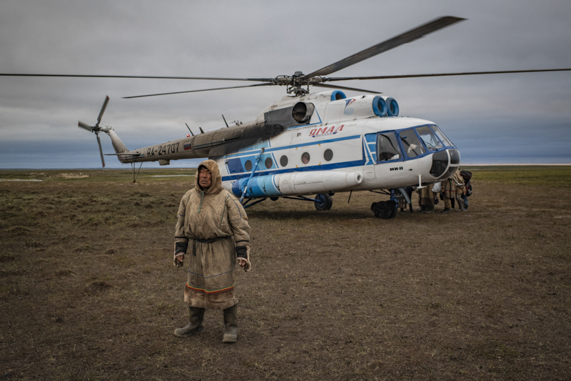 Yamalo-Nenets Autonomous Region   Russia  September  2018The Yamal peninsula in western Siberia, a homeland of nomadic Nenets reindeer herders.The Nenets people of the Siberian arctic are the guardians of a style of reindeer herding that is the last of its kind. Through a yearly migration of over a thousand kilometres, these people move gigantic herds of reindeer from summer pastures in the north to winter pastures just south of the Arctic Circle. No-one knows for certain whether it is the reindeer that lead the people or vice versa. What is certain is that fewer places on earth are home to a more challenging environment, an environment where temperatures plummet to -50C and where crossing the worlds fifth largest river as it deep-freezes is just part of the routine. Such a difficult environment unites the people physically through a regimented work ethic, but far more importantly, the Yamal-Nenets are unified by a robust and vibrant culture. It is a culture that has had to survive a turbulent history, from early Russian colonisation, to Stalin's terror regime, to the modern day dangers of a rapacious oil and gas development programme.