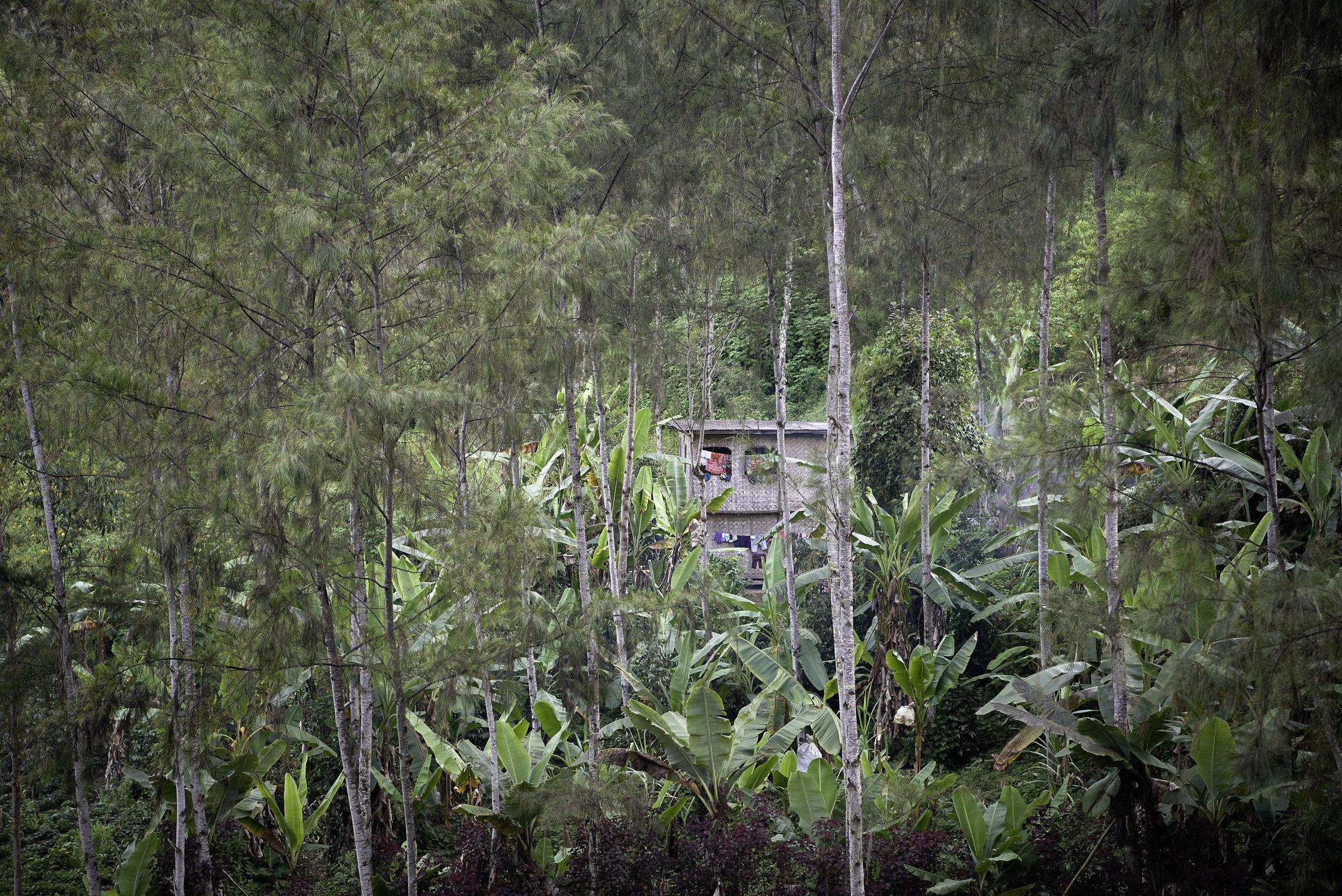 13-Village-Papua-New-Guinea-Kristina-Steiner.jpg