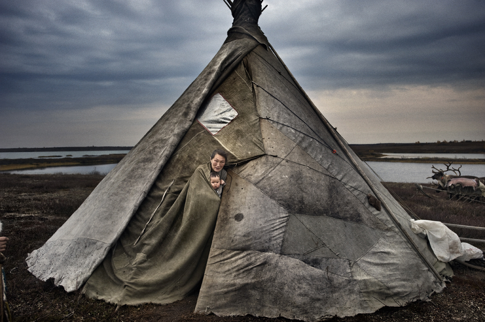 Yamal peninsula,�north-west Siberia, Russia:Three �Nenet �families�live on the tundra in a reindeer-skin tents or chums (ital); the group has around 600 reindeer.