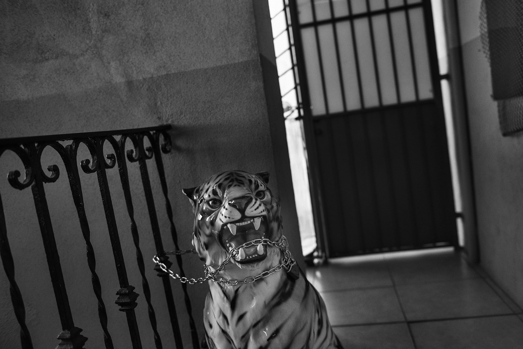 A tiger statue inside the former council estate building of Jacob Bamba (30), with shared toilets on the balconies, in the working class district of Barriera di Milano in Turin, Italy; November 2018.