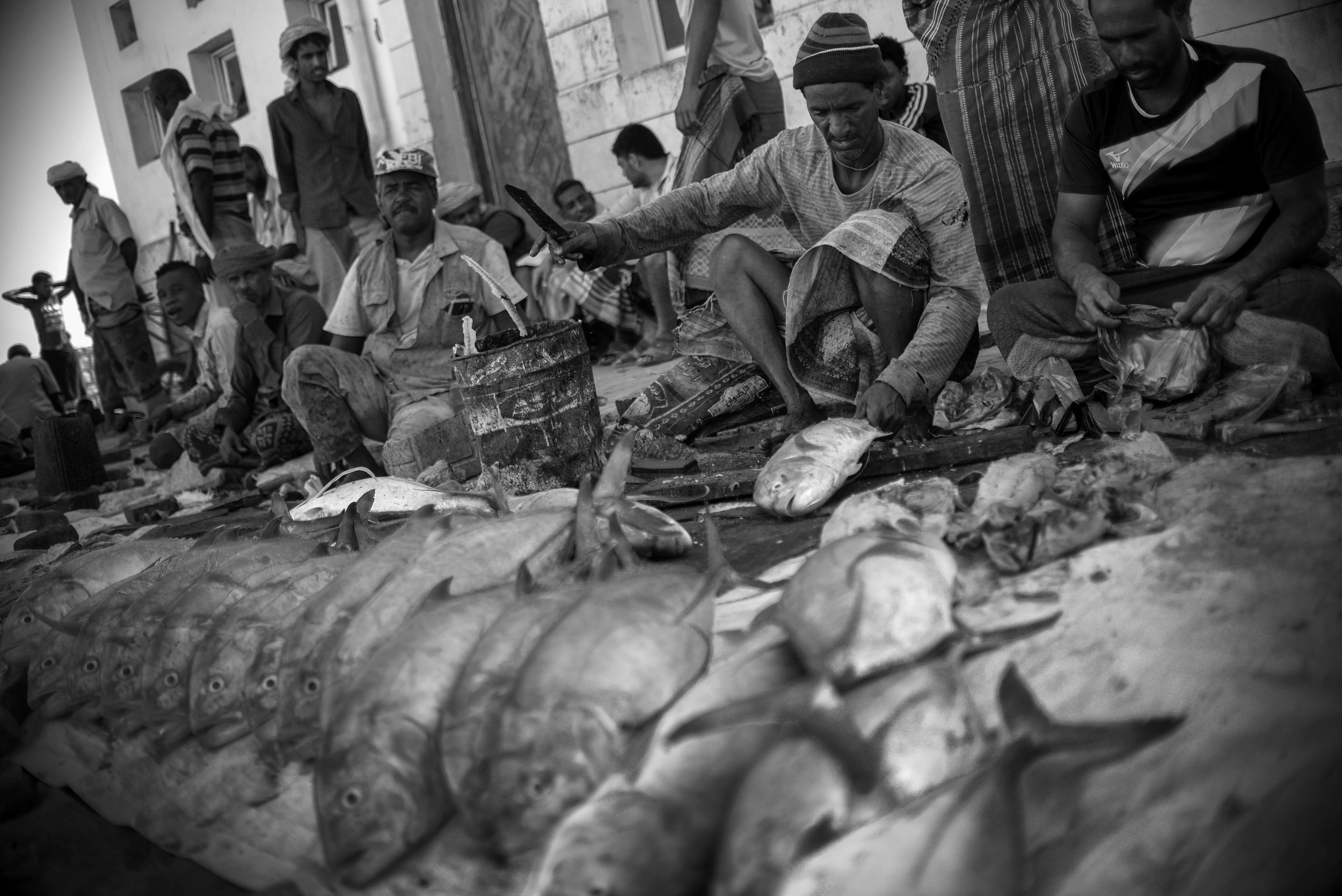 Project Socotra: The invisible Island February 2019 Fishing is the main income for the natives on Socotra. Each morning they go to an improvised fishing market, around an abandoned building in the capital Hadibu.