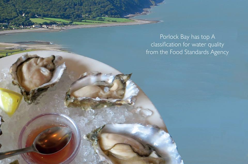 Porlock-Bay-Oysters-Minehead-Farmers-Market.jpg