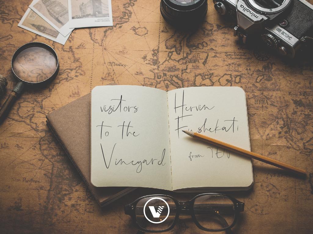 Visitors to the Vineyard_Hervin.jpg