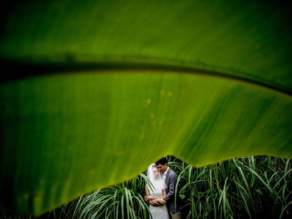 Photo by Justin Mott/Mott Weddings