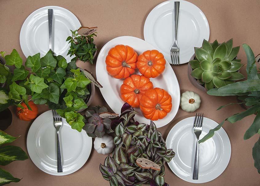 How to Plan a Friendsgiving Dinner.jpg