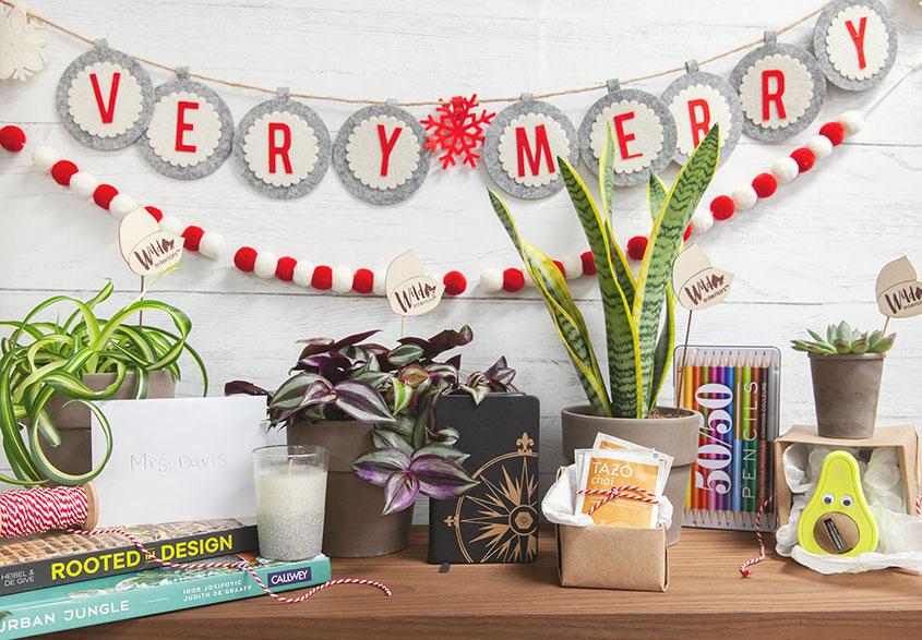 Winter-Gifts.jpg